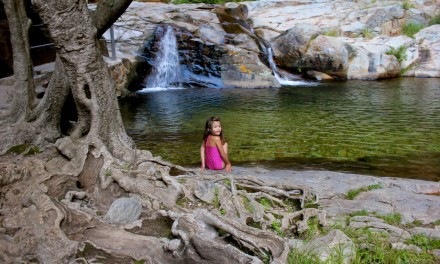 Hidden waterfalls and why our family needs a 4×4