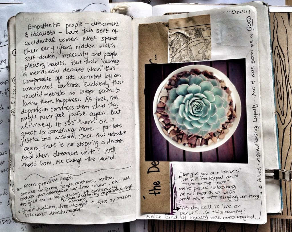 Snapseed (11)