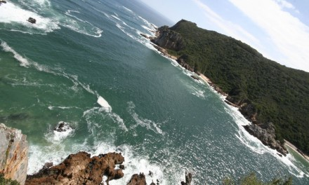 Fun things to do in Plett (with kids)